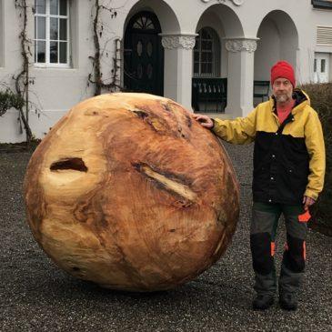 Lieferung eines grossen Baumstammes für einen Künstler
