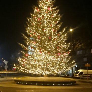 Liefern einers 14m grossen Weihnachtsbaumes für das Dorfzentrum Steinhausen